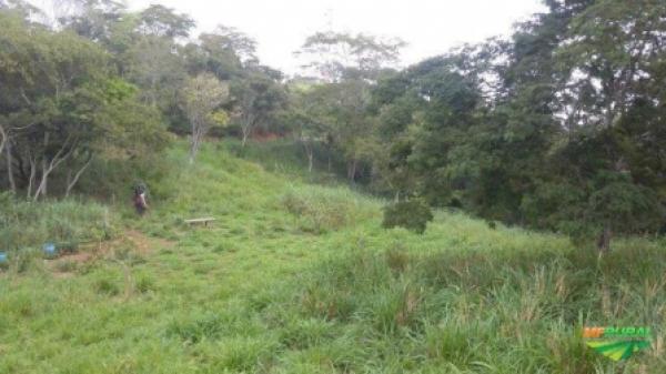 Imóvel Rural - Fazenda Ponta Grossa - Anchieta/ES